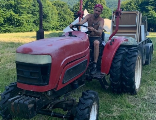 Pat on the head for driving a tractor?