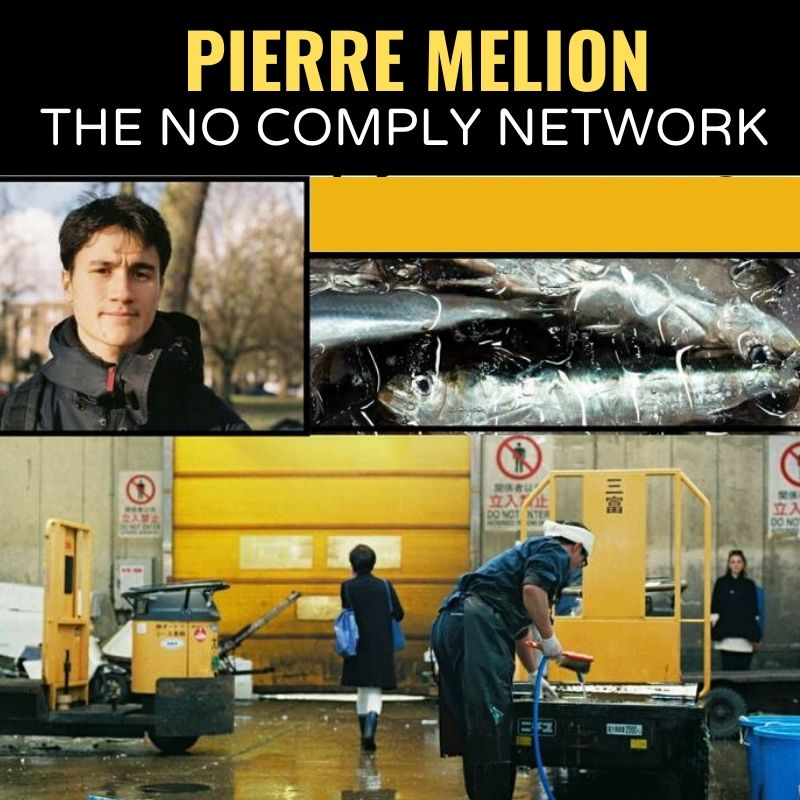 Pierre Melion The No Comply Network Graphic